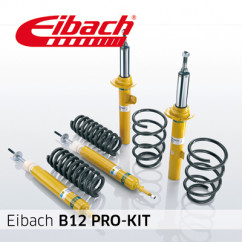 Eibach B12 Pro-Kit E90-85-013-02-22 voor Volkswagen - Transporter T5 Pritsche/Fahrgestell (7JD, 7JE, 7JL, 7JY, 7JZ) - 3.2 V6, 3.2 4motion, 2.0 TDI, 2.0 TDI 4motion, 2.0 BiTDI, 2.0 BiTDI 4motion, 2.5 TDI, 2.5 TDI 4motion - 08.03 -